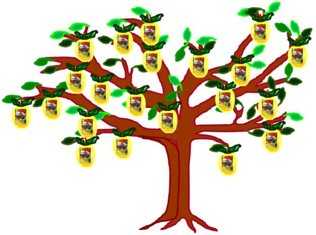 As frutas em cuvete